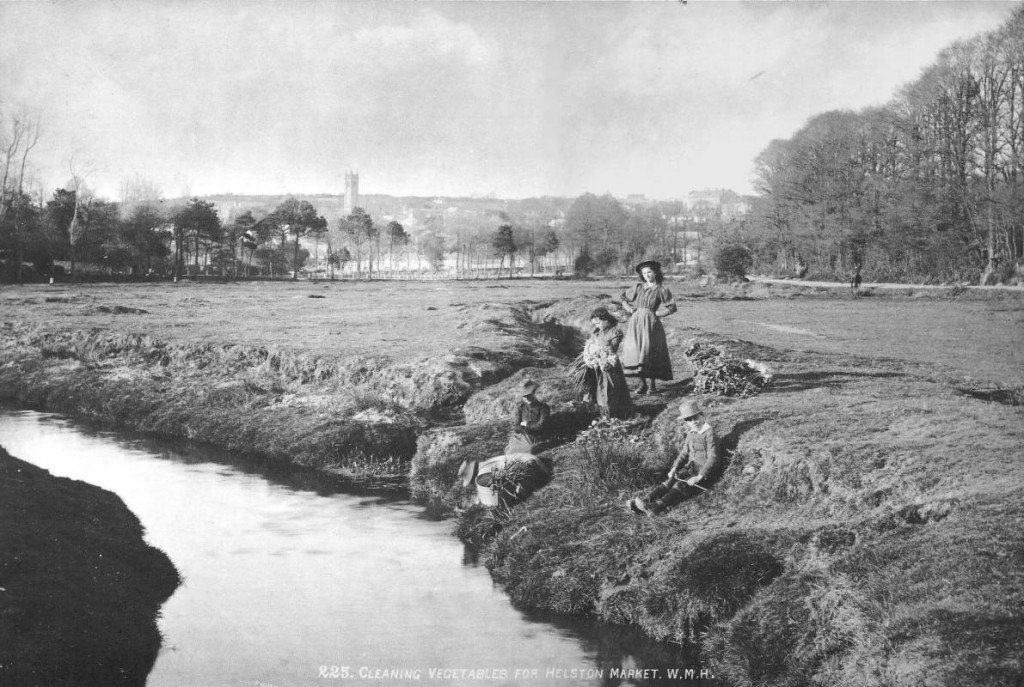 A fantastic early photograph of local people washing vegetables in the River Cober for Helston Market.  Photo kindly donated to the Helston History website by CHRIS RAYNOR