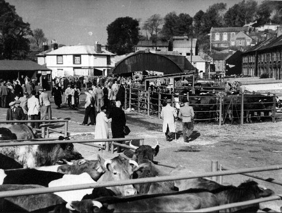 HELSTON OLD CATTLE MARKET