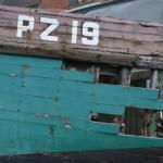 PZ19 PROVIDER
