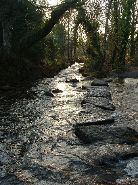 STEPPING STONES OVER THE RIVER COBER AT LOWER TOWN
